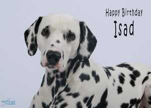 Happy Birthday Isad!!!